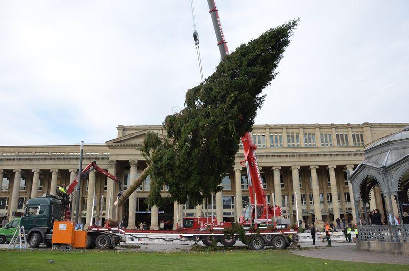 Höchster Weihnachtsbaum Deutschlands.Stuttgarts Höchster Weihnachtsbaum Ziert Die Innenstadt Stuttgarter